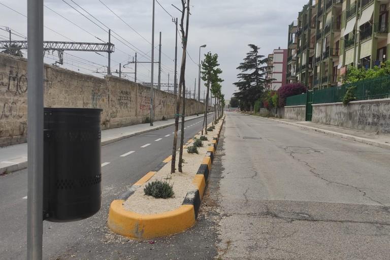 Via Cozzoli (