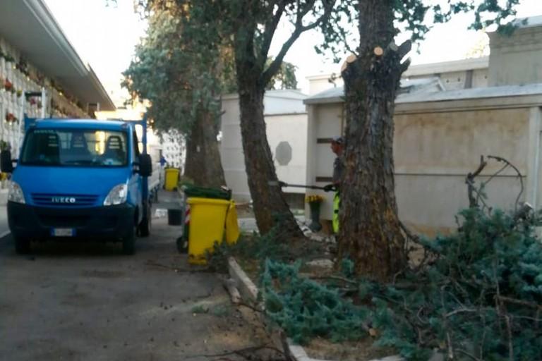 Esaurite le fosse anche nell'ultima zona di inumazione, nel Cimitero di Molfetta si cercano altri spazi per le sepolture