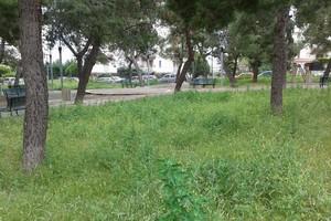 Giardino comunale di Piazzetta Primo Maggio