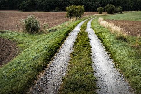 Servitù di passaggio: quando sussiste il diritto? Chi paga le spese?