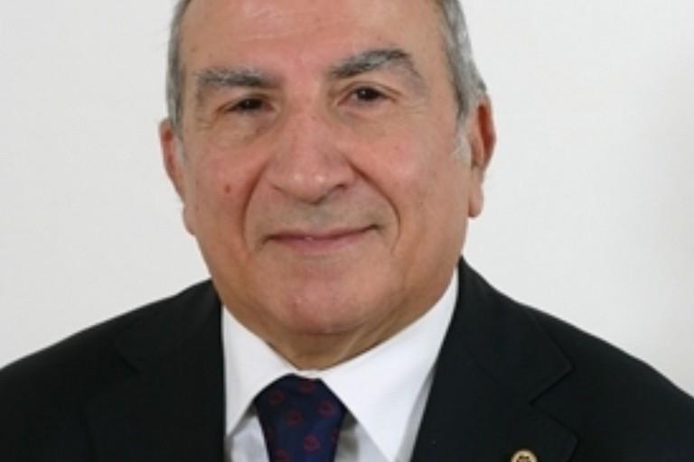 Luigi Palombella