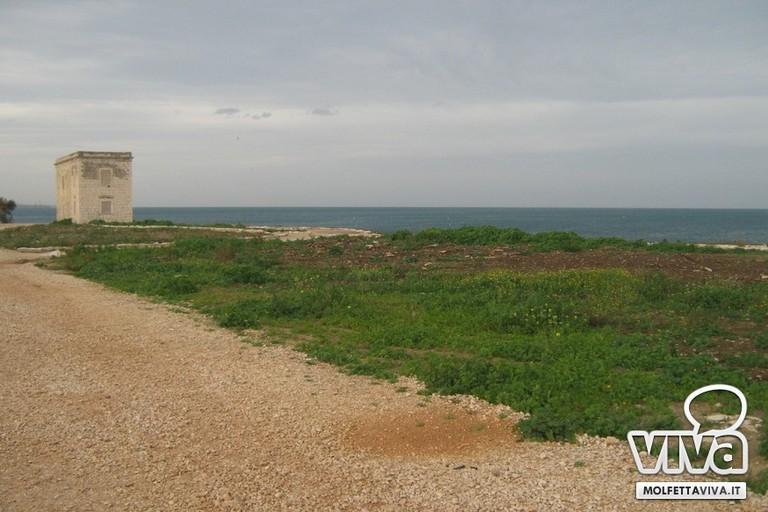 Torre Gavetone